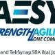 AESY LLC